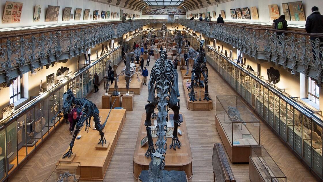 Comment les musées du monde entier préparent leur avenir