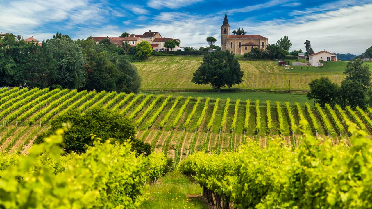 La Bourgogne aura bientôt sa Cité des vins et des climats