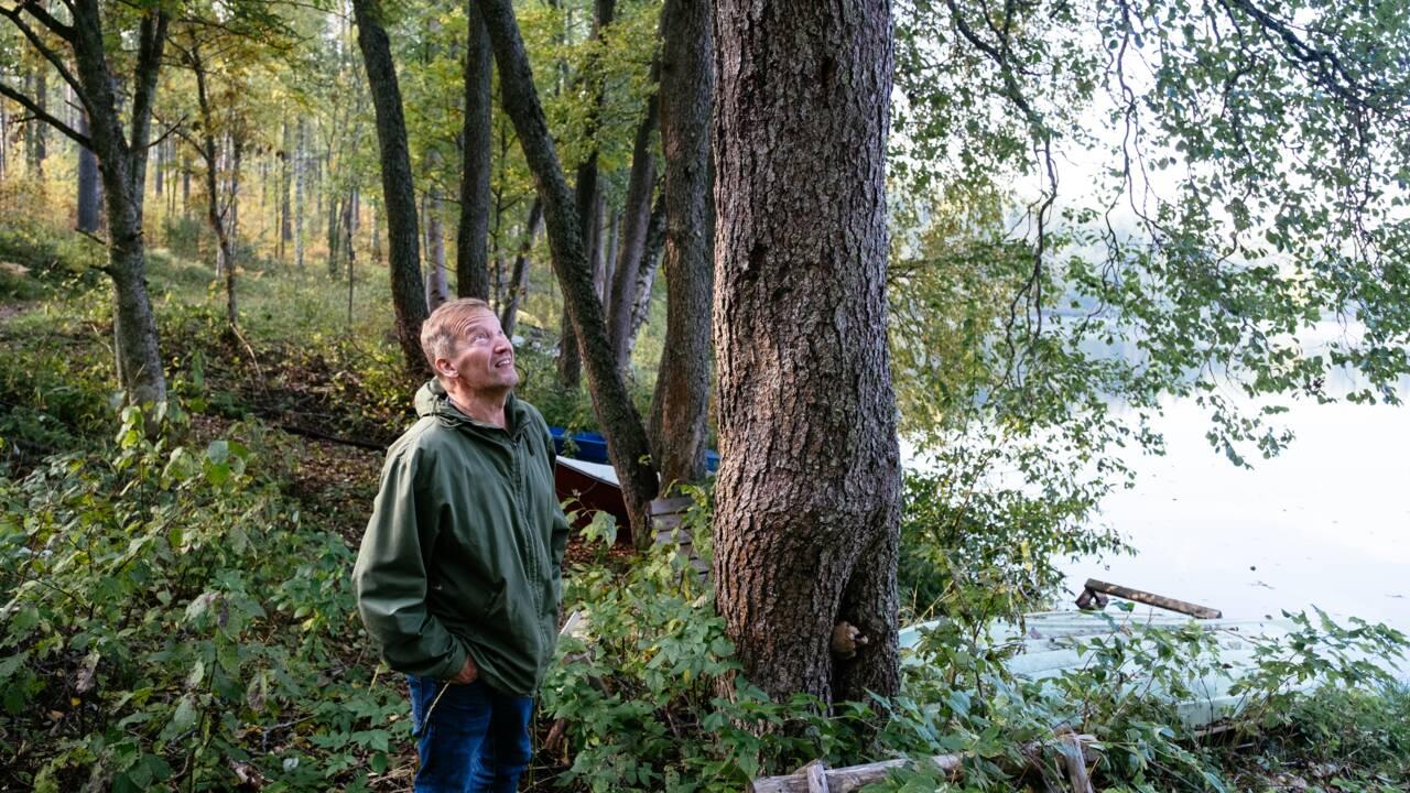 Reboiser intelligemment, le défi d'une ONG finlandaise pour la planète
