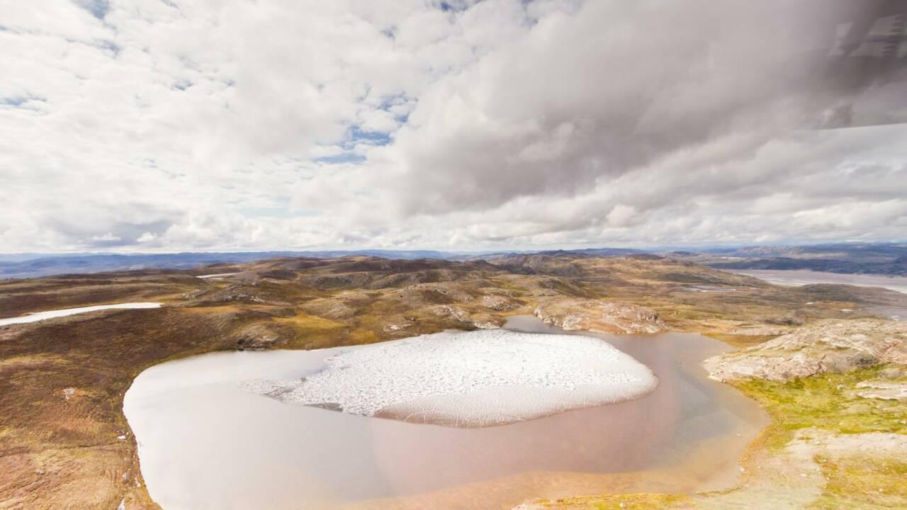 Des échantillons oubliés révèlent des fossiles de plantes sous la glace du Groenland