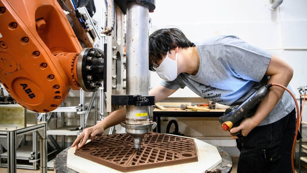 Hong Kong : des impressions 3D en terre cuite au secours des coraux