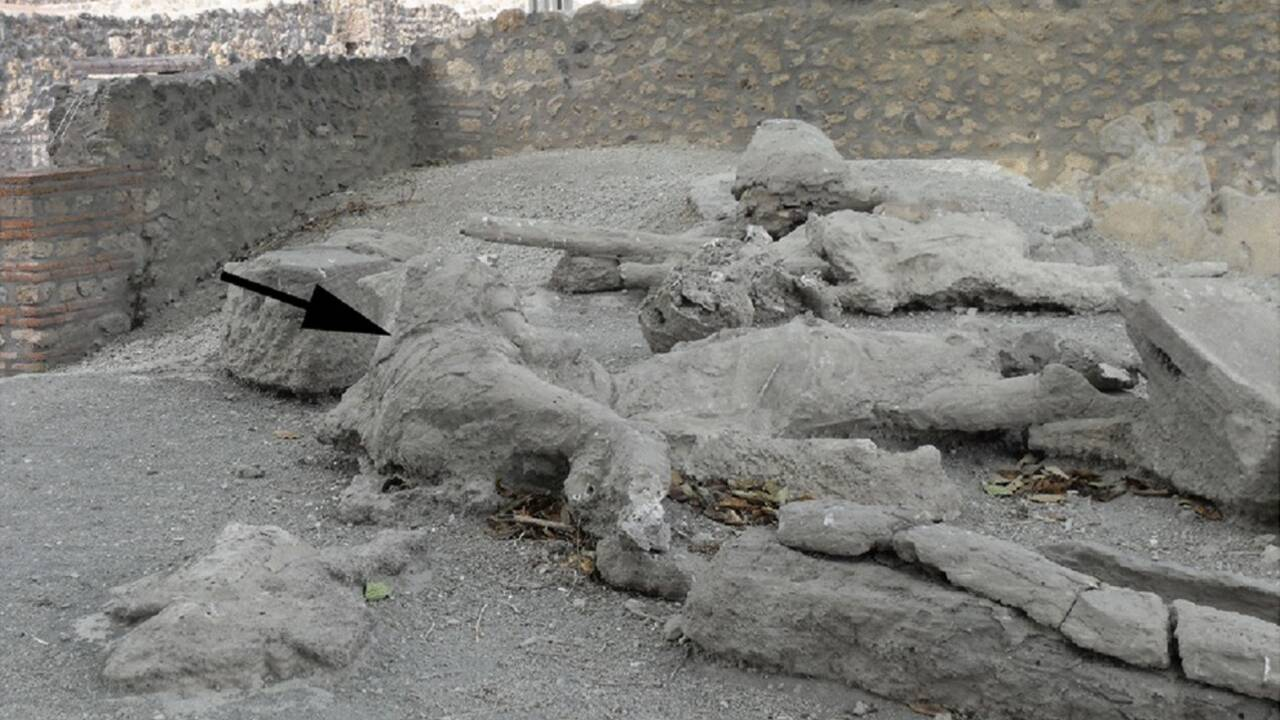 La nuée ardente du Vésuve aurait tué les habitants de Pompéi en moins de 20 minutes