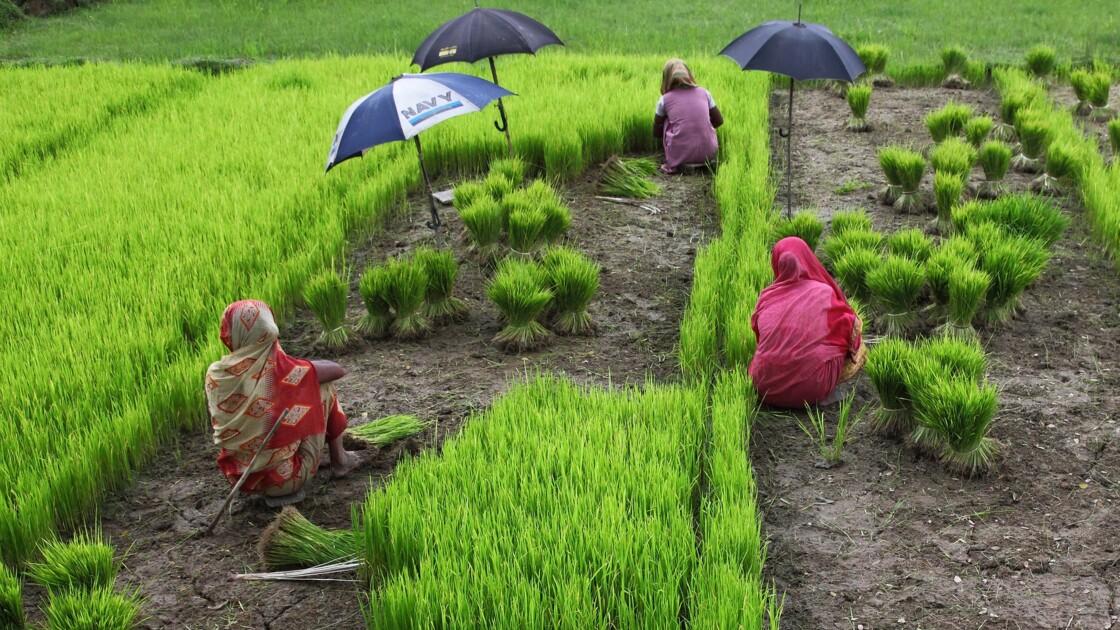50 ans du Bangladesh : une réussite économique, mais un Etat de plus en plus répressif