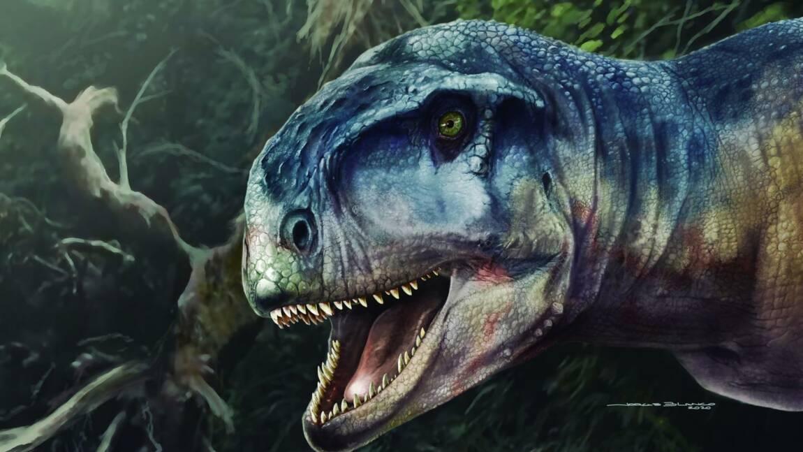 """Llukalkan, ce dinosaure qui """"semait la peur"""" il y a 80 millions d'années en Patagonie"""