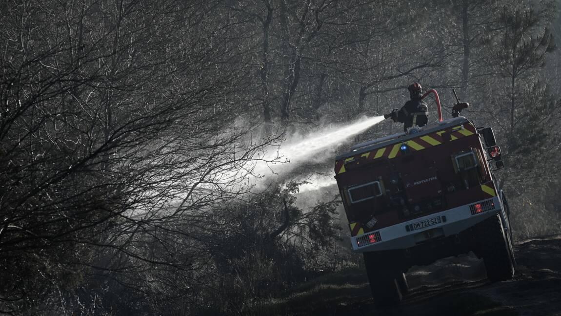 Gironde: feu de forêt maîtrisé, environ 300 hectares de pins détruits