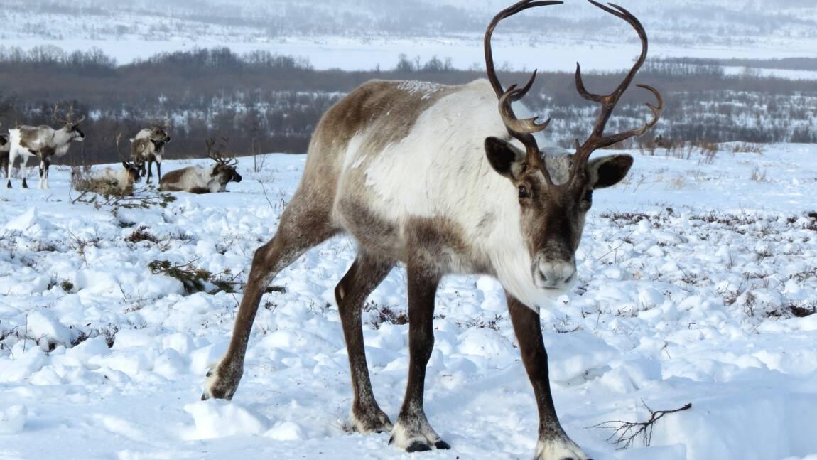 """Un """"cyclone"""" de rennes impressionnant filmé en Russie"""