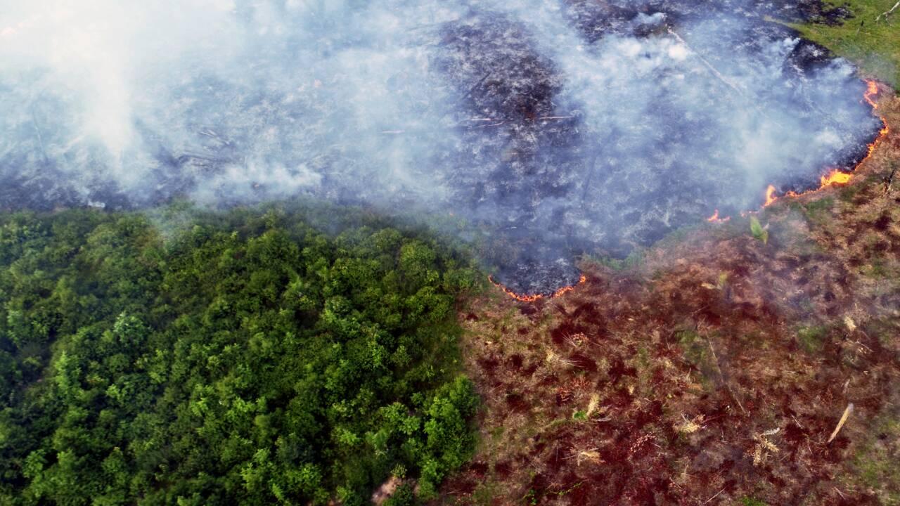 """Science du climat: encore des """"mystères"""" à percer malgré les progrès pour le climatologue Robert Vautard"""