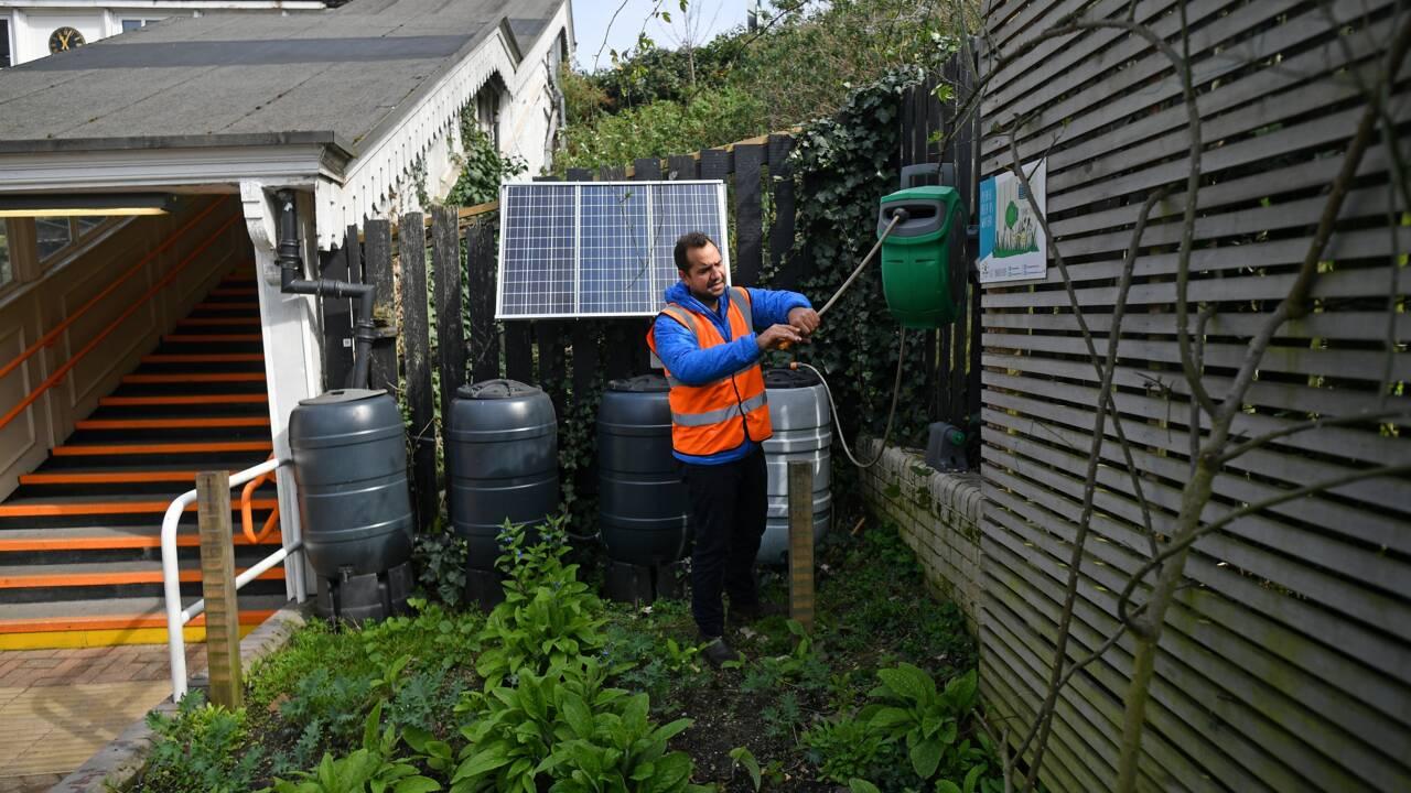 Energy Garden : des jardins communautaires fleurissent dans le métro londonien