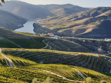 Portugal : à la découverte de la vallée du Douro