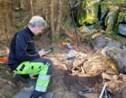 Un trésor vieux de plus de 2 500 ans découvert par un promeneur en Suède