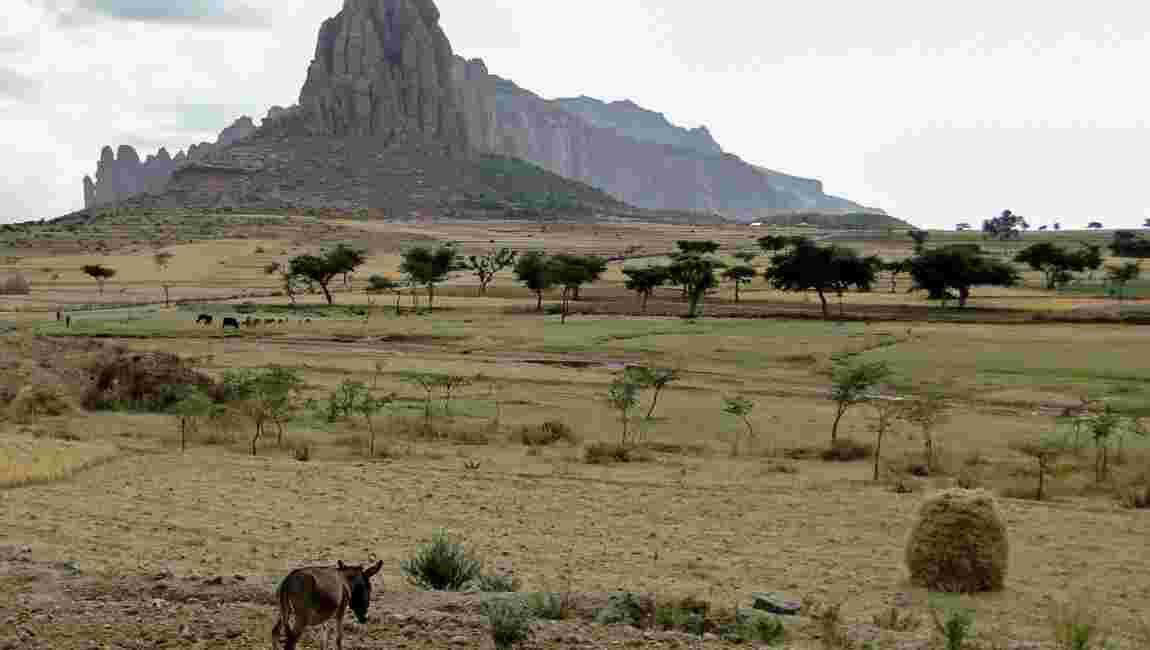 Ethiopie : le Tigré, un haut lieu religieux, économique et politique