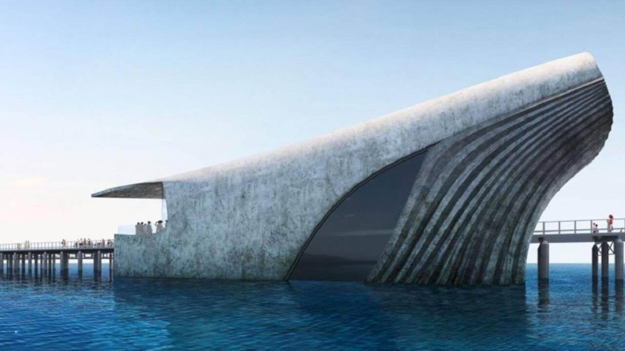 Australie : un impressionnant observatoire marin verra bientôt le jour