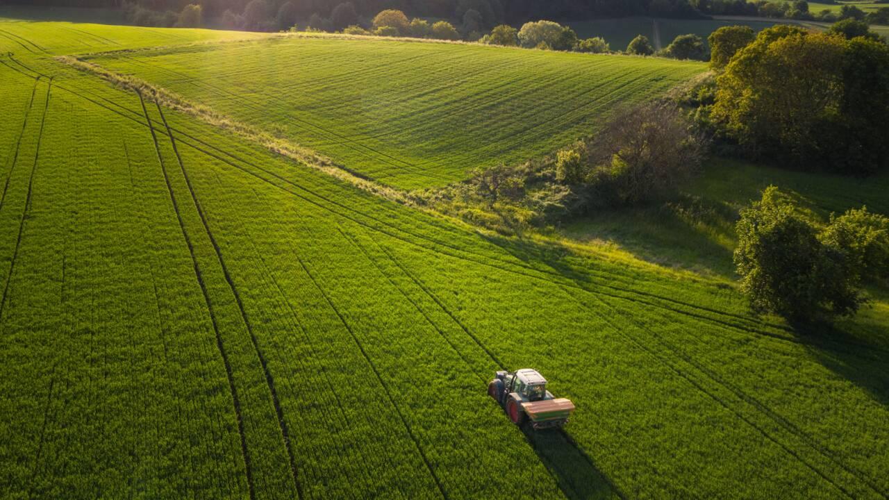 Pour agrandir son terrain, un agriculteur repousse la frontière entre la France et la Belgique