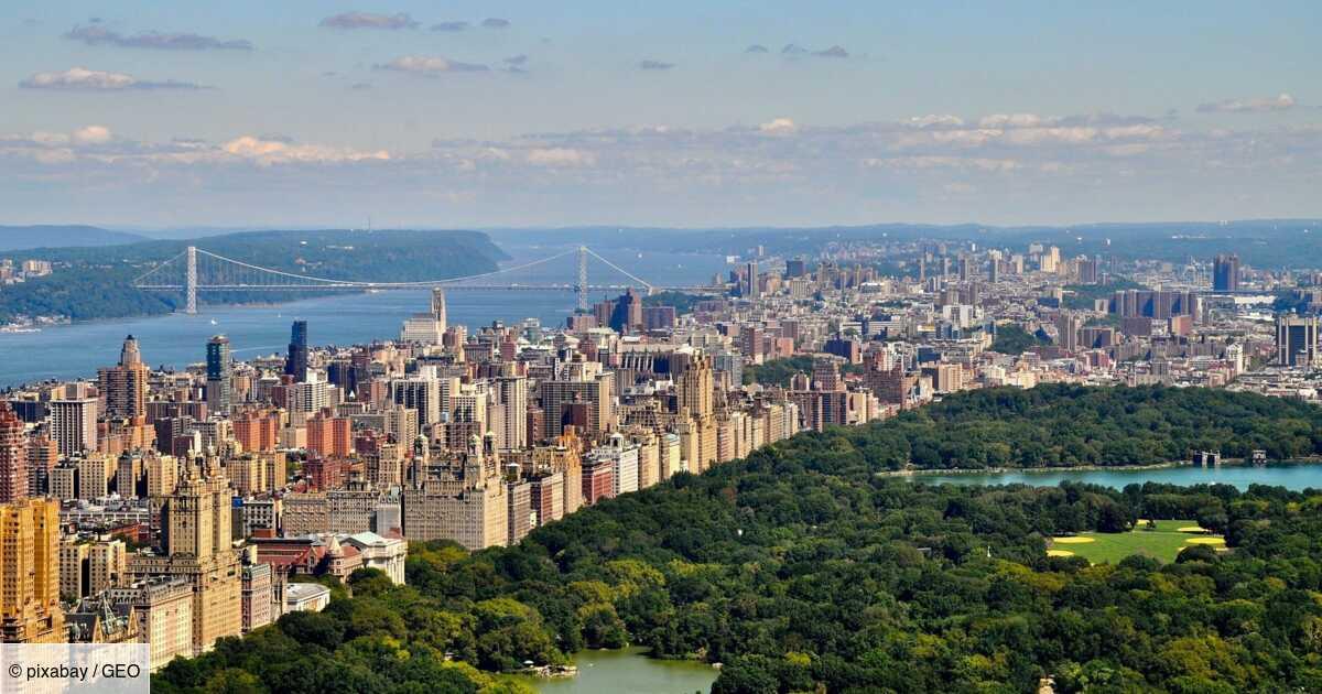 Covid-19 : New York propose de vacciner les touristes sur ses sites emblématiques