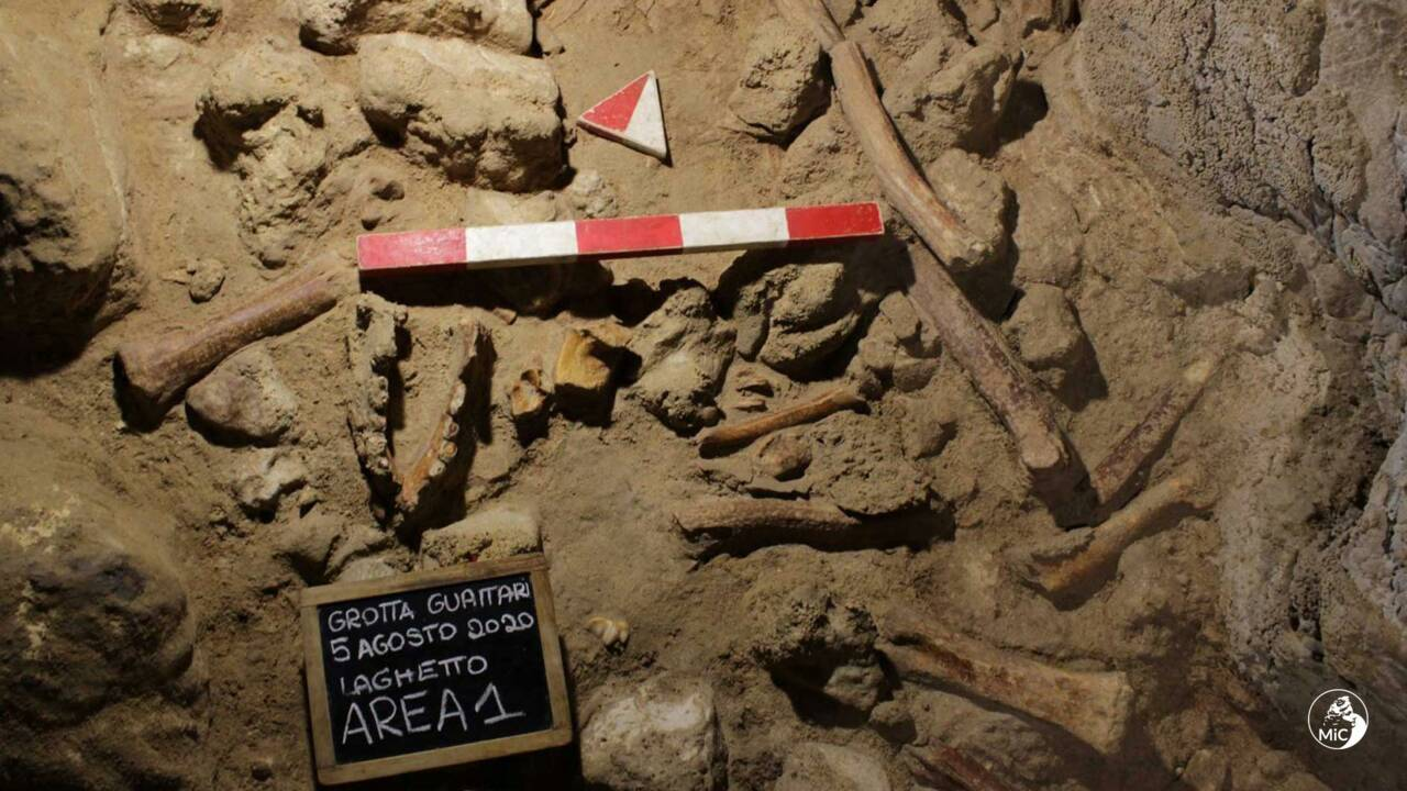 Les restes de neuf Néandertaliens trouvés dans une grotte en Italie