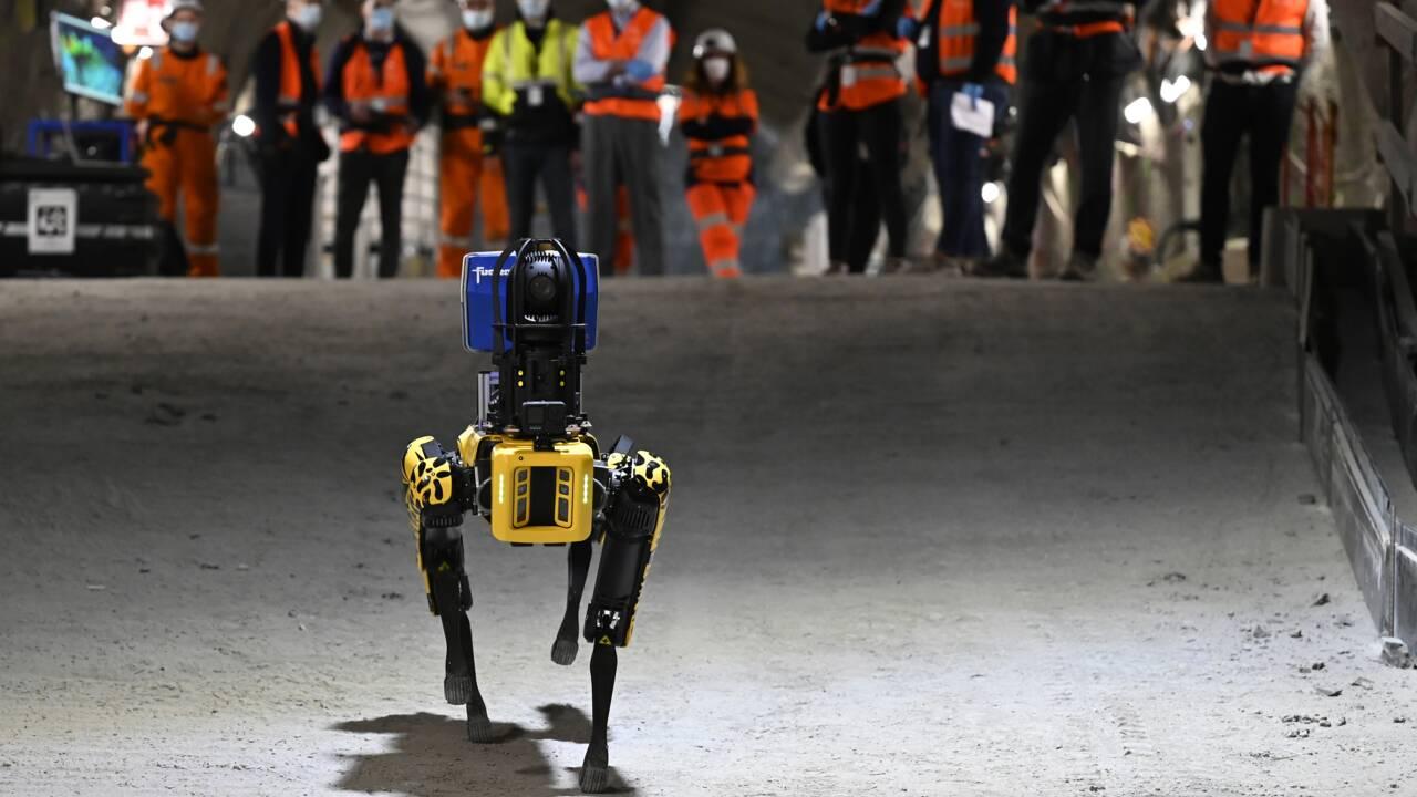 Un robot-chien intelligent dans les entrailles du futur centre d'enfouissement de Bure