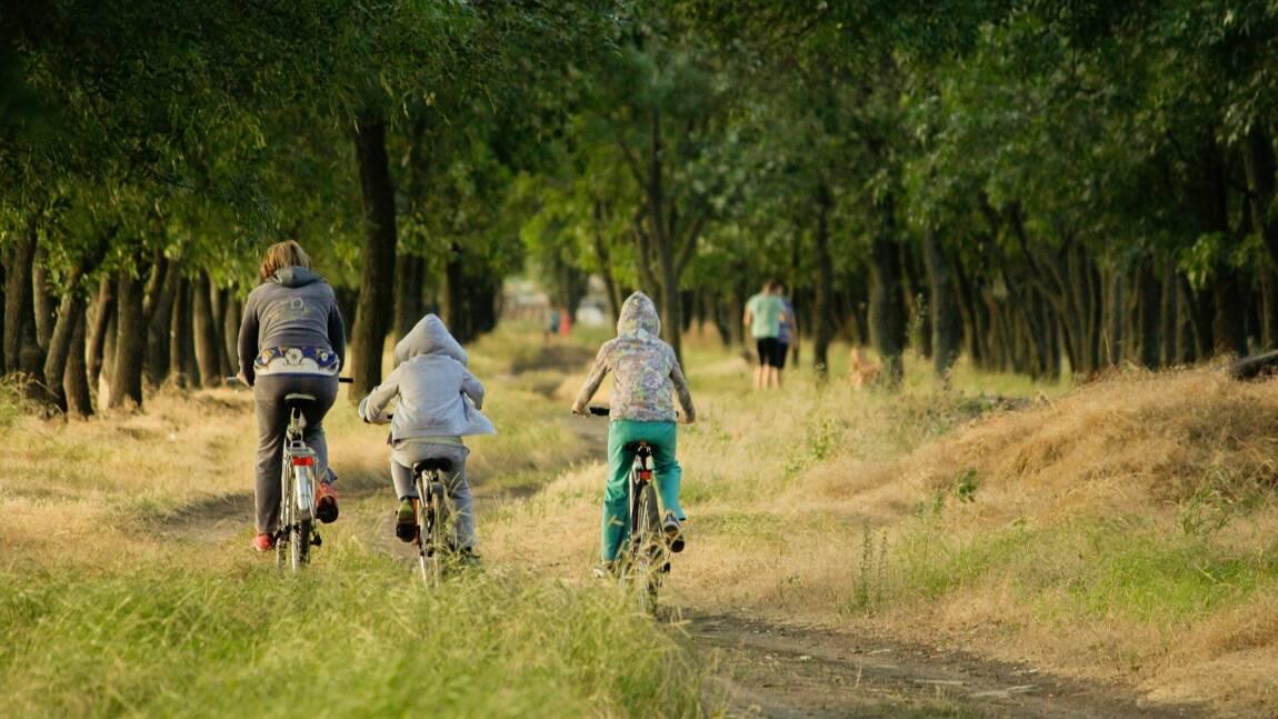 Label éco-responsable : le guide pour choisir une location de vacances durable