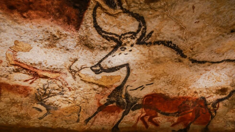 Dîners préhistoriques et visites nocturnes à la grotte de Lascaux cet été