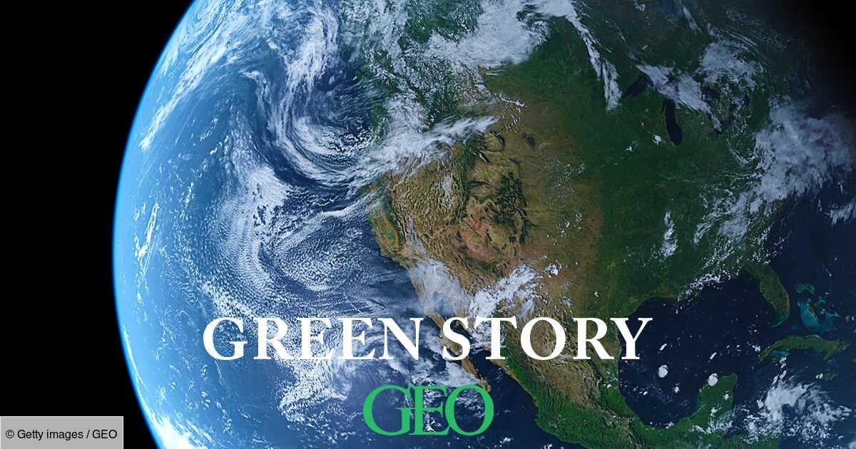Green Story : comment la Terre a évolué en 40 ans?