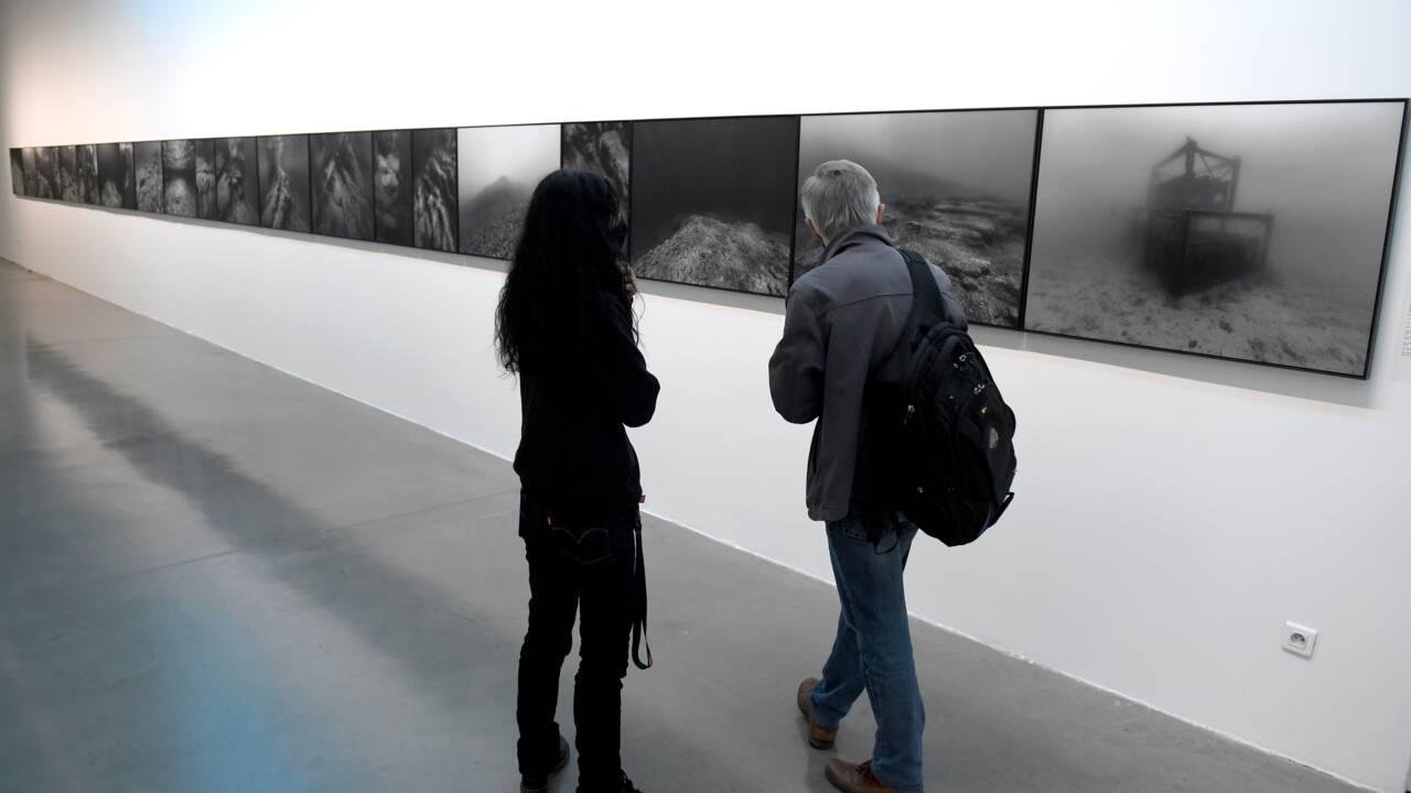 Apnéiste et photographe, Nicolas Floc'h capture la couleur de l'eau