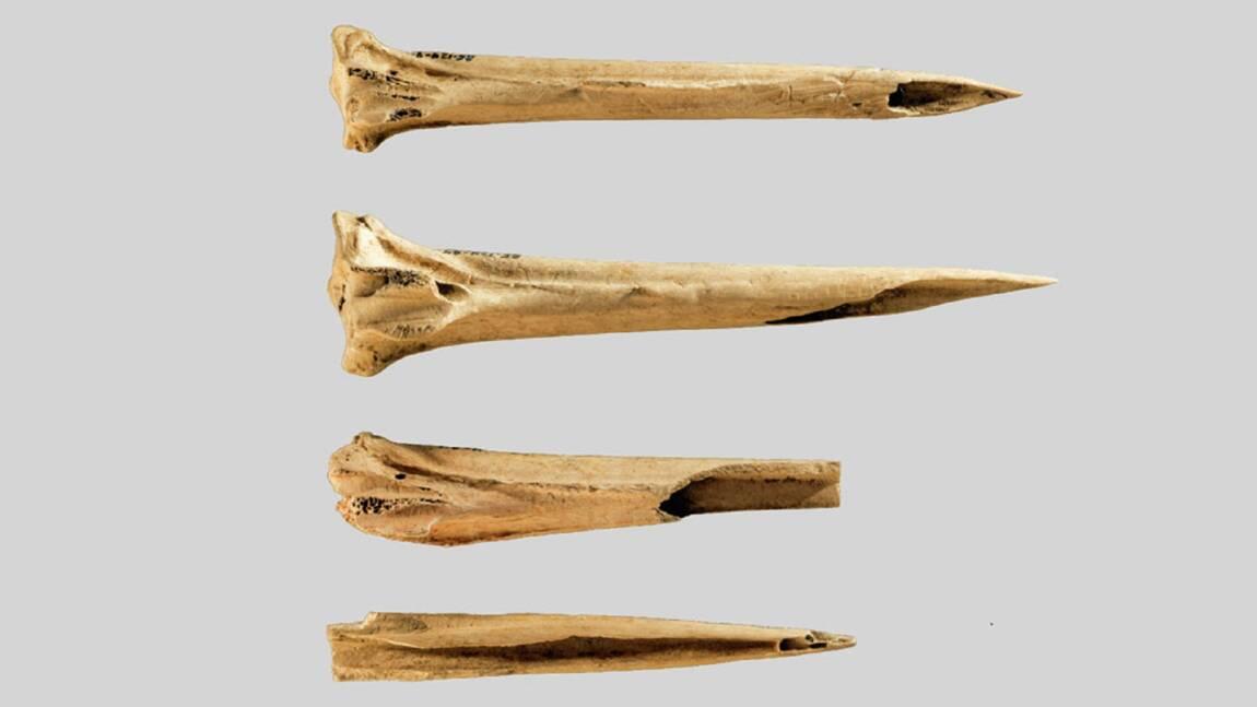 Une découverte prouve que l'on se tatouait déjà il y a plus de 3620 ans
