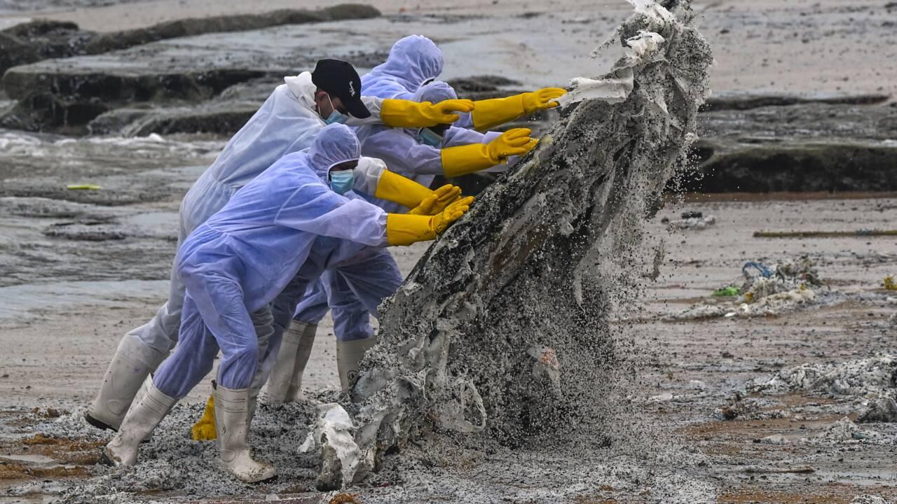 Navire en feu: les plages sri-lankaises menacées par des tonnes de plastique