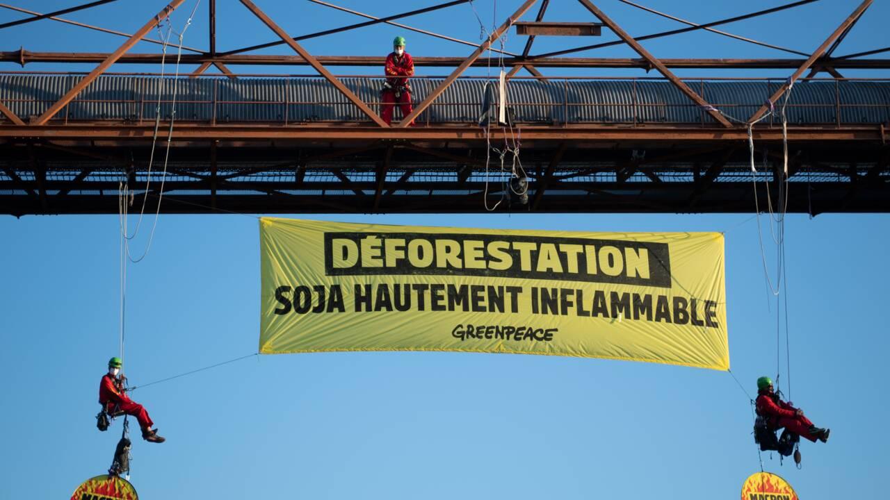 Un entrepôt de soja bloqué par des militants de Greenpeace près de Saint-Nazaire