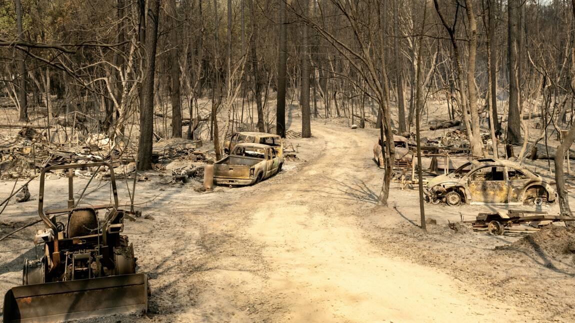 Sécheresse et feux de forêt: la Californie retient son souffle