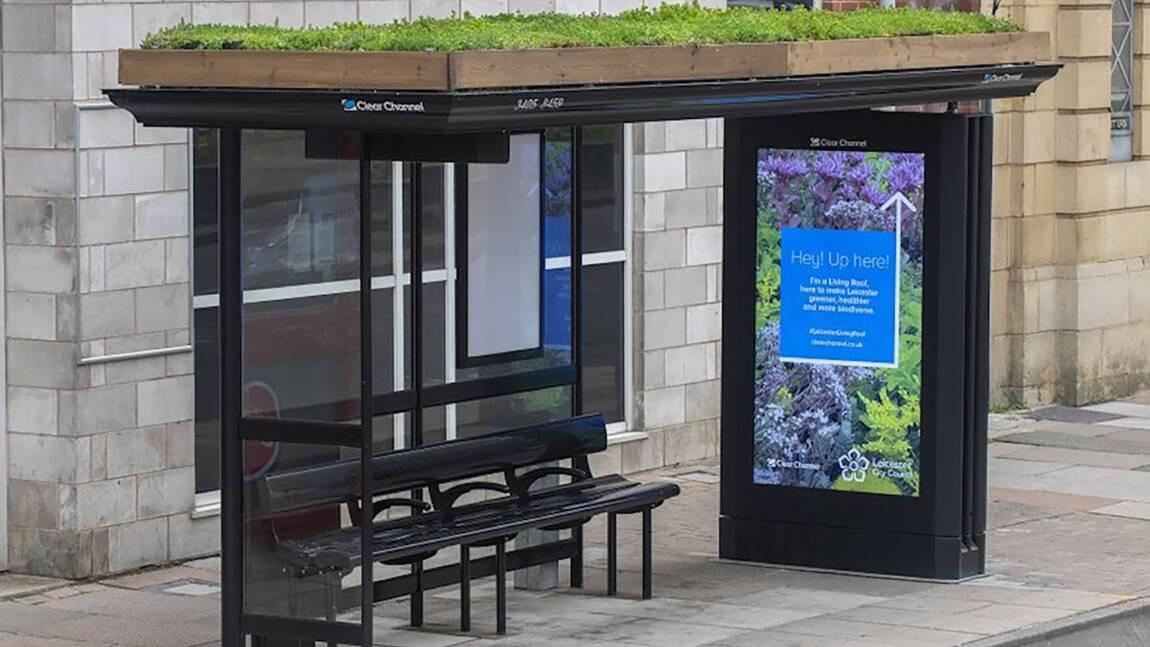 Au Royaume-Uni, cette ville végétalise les toits de ses arrêts de bus pour aider les abeilles