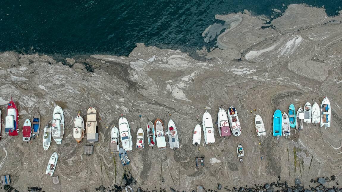 """Turquie : les côtes envahies par de la """"morve de mer"""""""