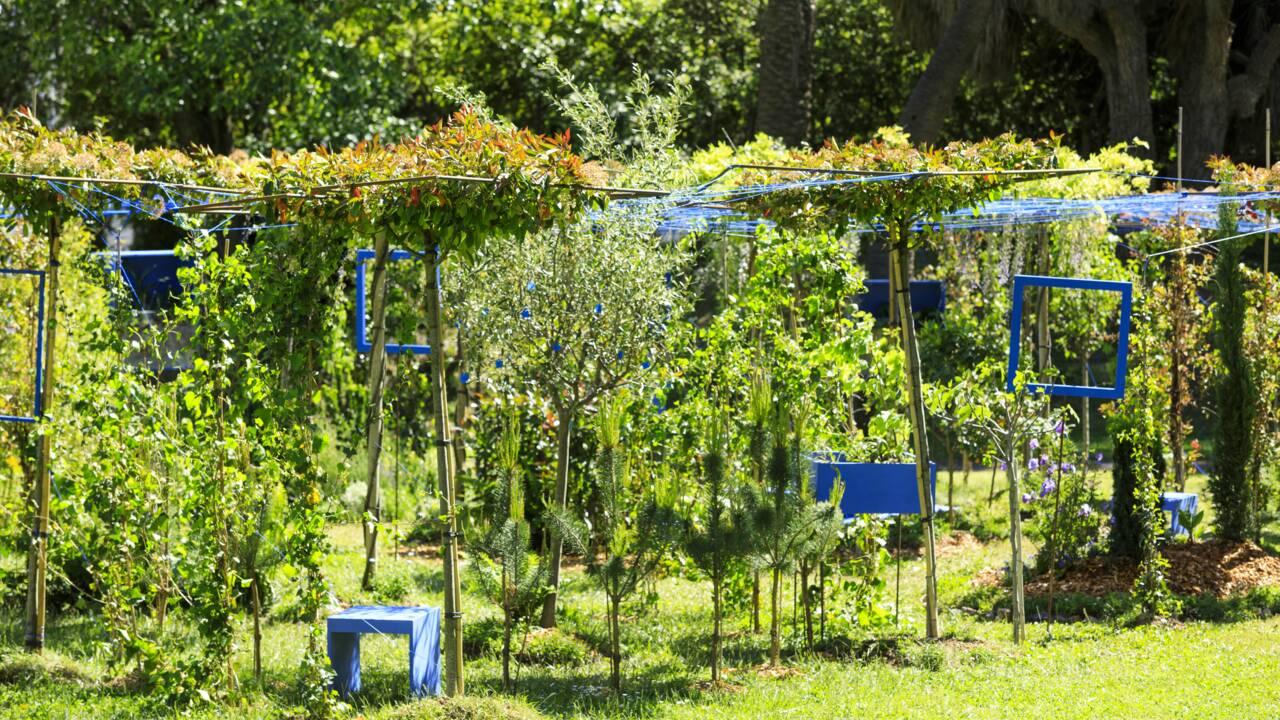 Le Festival des jardins de la Côte d'Azur dévoile ses lauréats de l'année