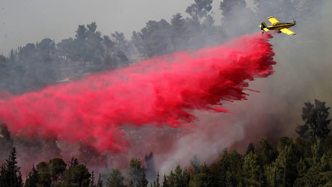 L'incendie aux abords de Jérusalem quasiment maîtrisé