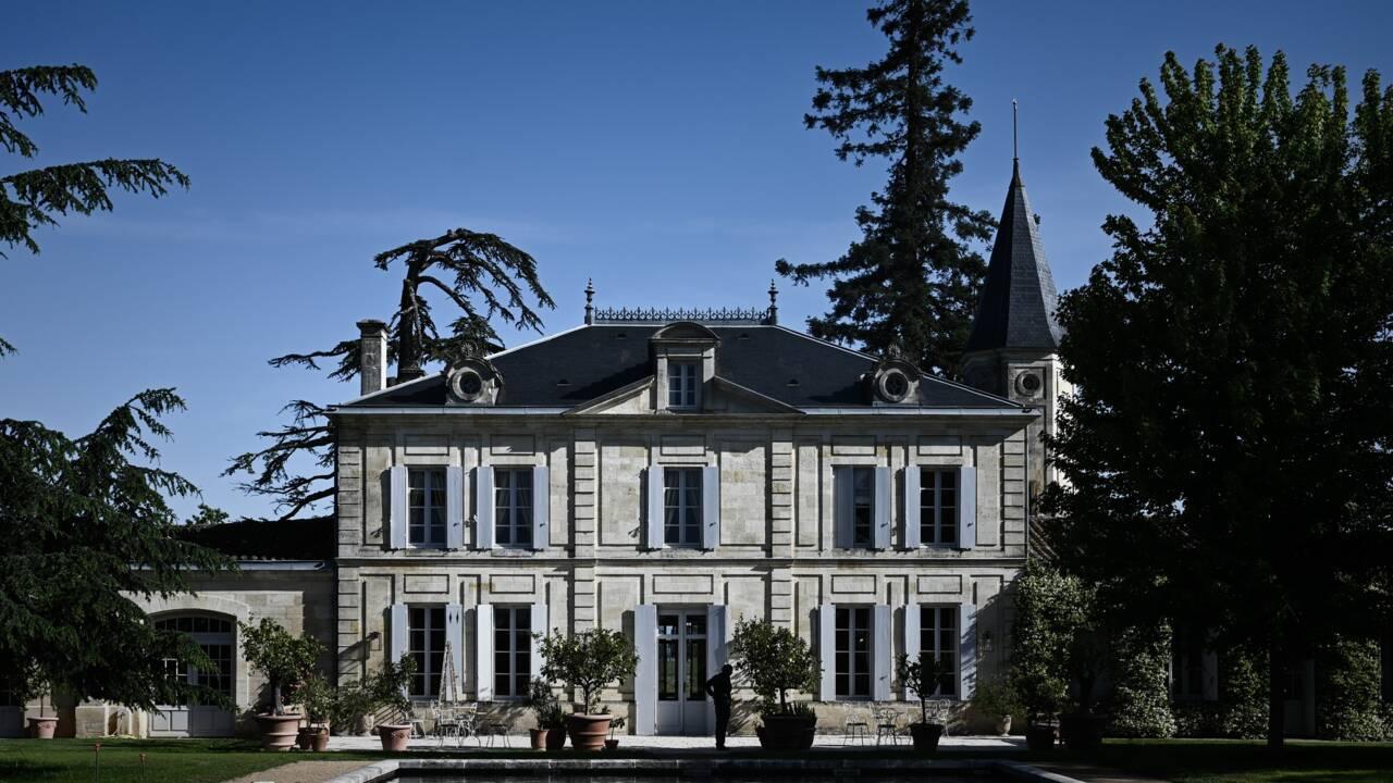 Le célèbre vignoble château Cheval Blanc plante des centaines d'arbres dans ses vignes