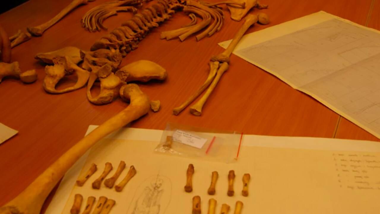 Une jeune fille enterrée avec un oiseau dans la bouche intrigue les archéologues en Pologne