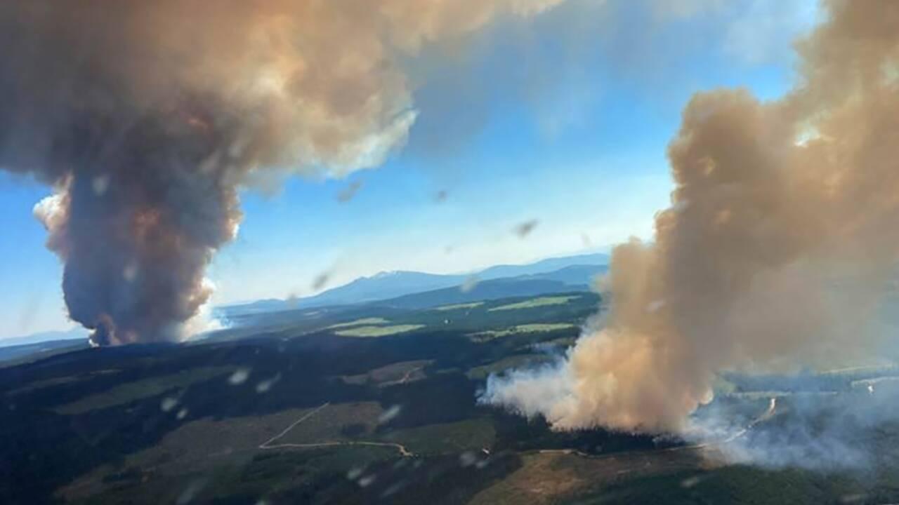 Canicule et incendies: l'Ouest américain et canadien suffoque