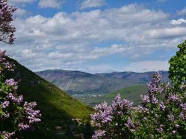"""Les plus belles photos de """"Paysages au printemps"""" par la Communauté GEO"""