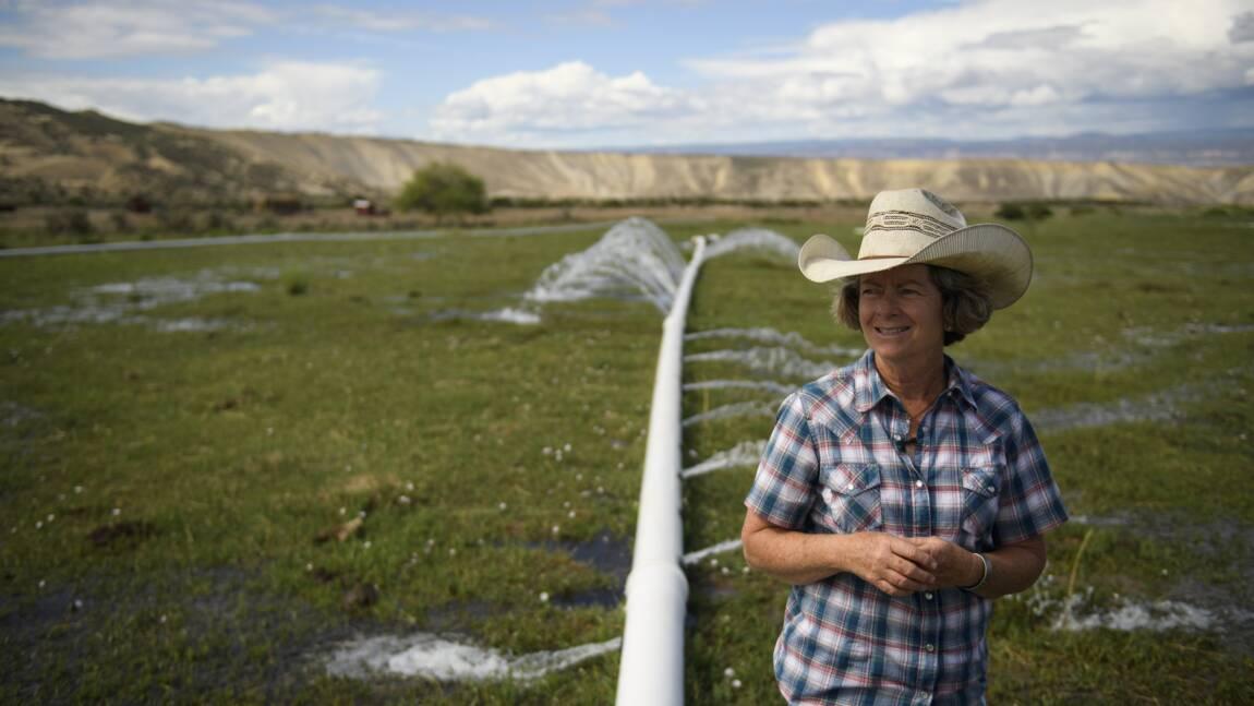 Les cowboys du Colorado sous pression climatique et sociale