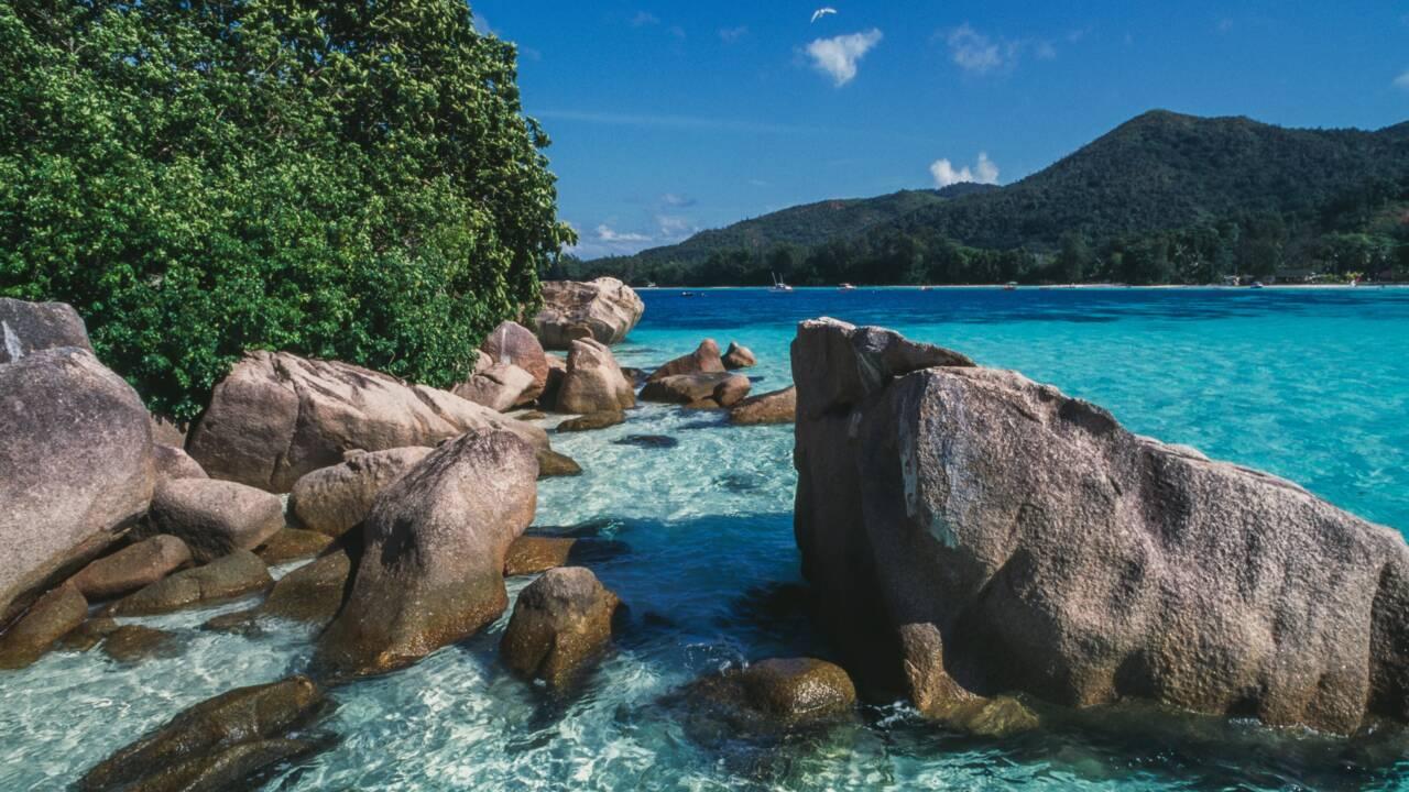 Îles Seychelles : notre sélection pour des vacances inoubliables