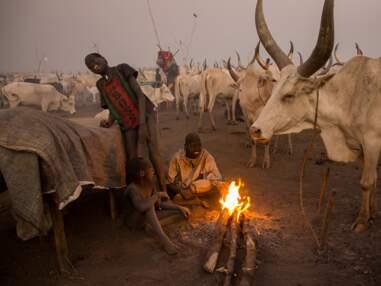 Au Soudan du Sud avec les Mundari, étonnants pasteurs du Nil