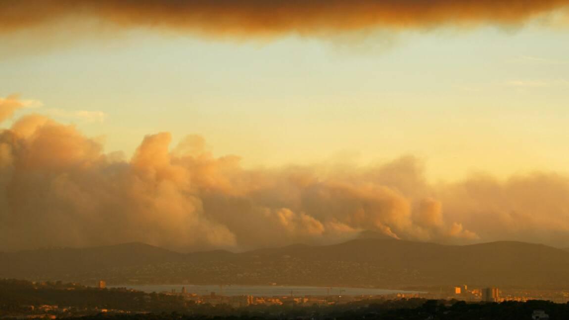 À Anglet, un an après l'énorme incendie de la pinède, on replante autrement