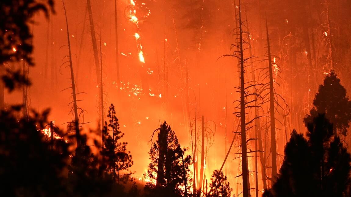 """""""Terrible preuve"""" : un documentaire explore les responsabilités humaines derrière les feux en Californie"""