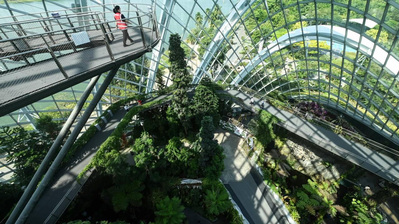 Les villes passent au vert : tour du monde en images
