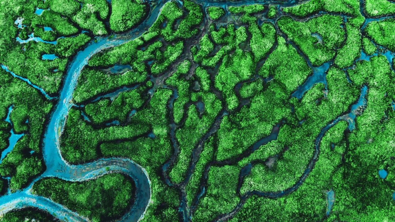 Quels sont les 10 plus grand fleuves du monde ?