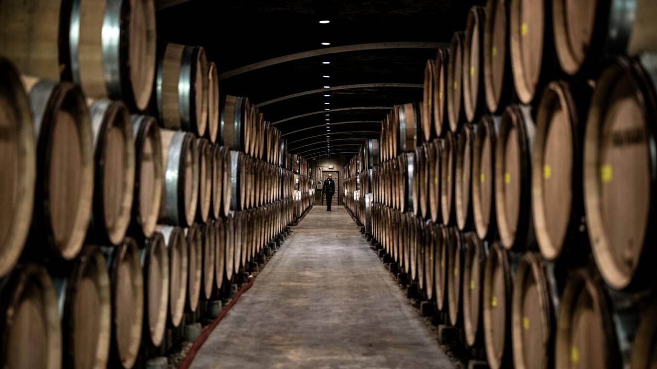 """2021, un millésime """"historiquement bas"""" pour la viticulture française"""