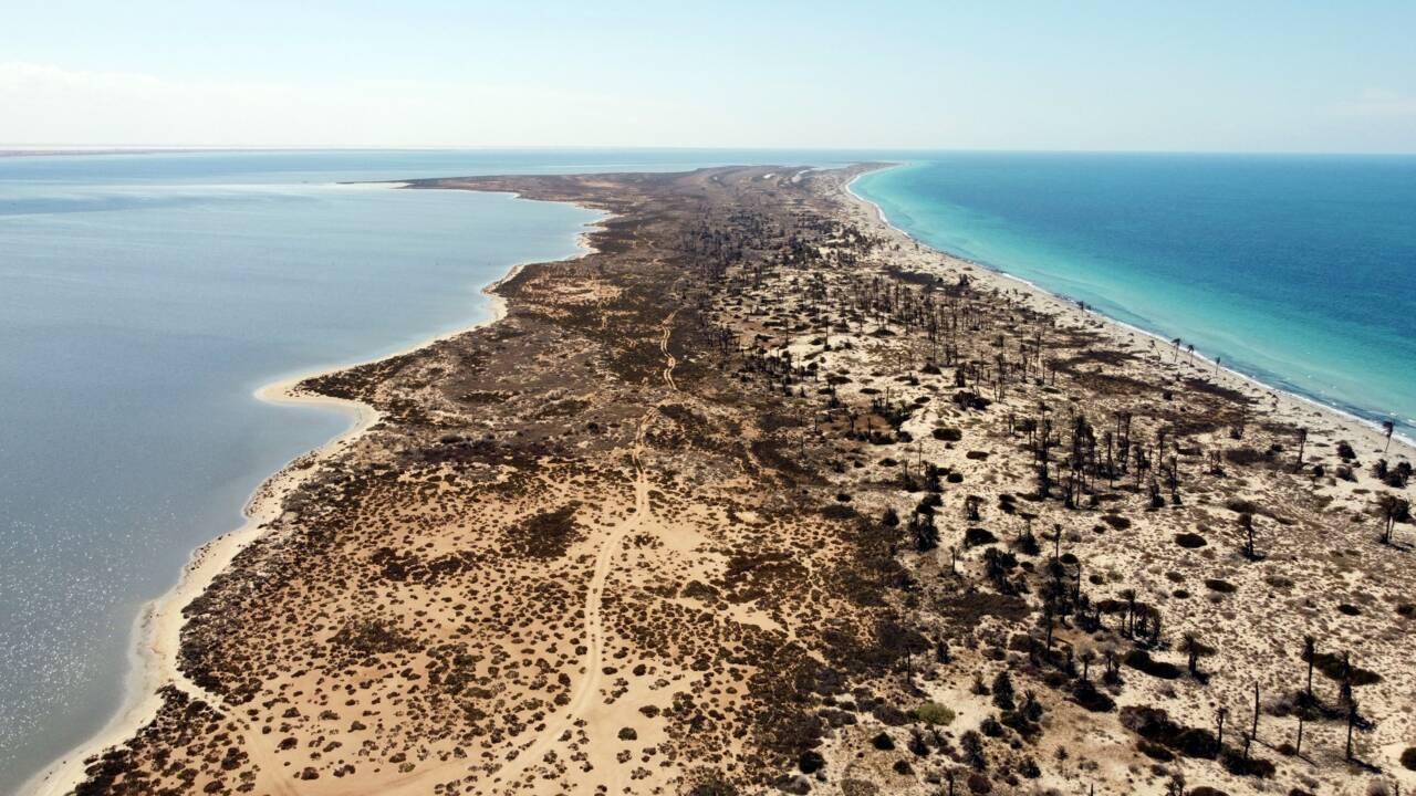 Pêche intensive et pollution : l'île libyenne de Farwa attend d'être sauvée