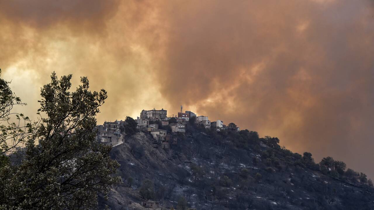 Algérie : plus de 40 morts dans les incendies qui ravagent le nord