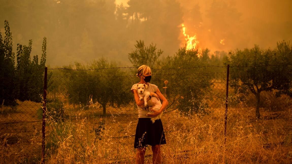 """Incendies en Grèce: la colère gronde à Asimnio, où """"personne n'arrive"""""""