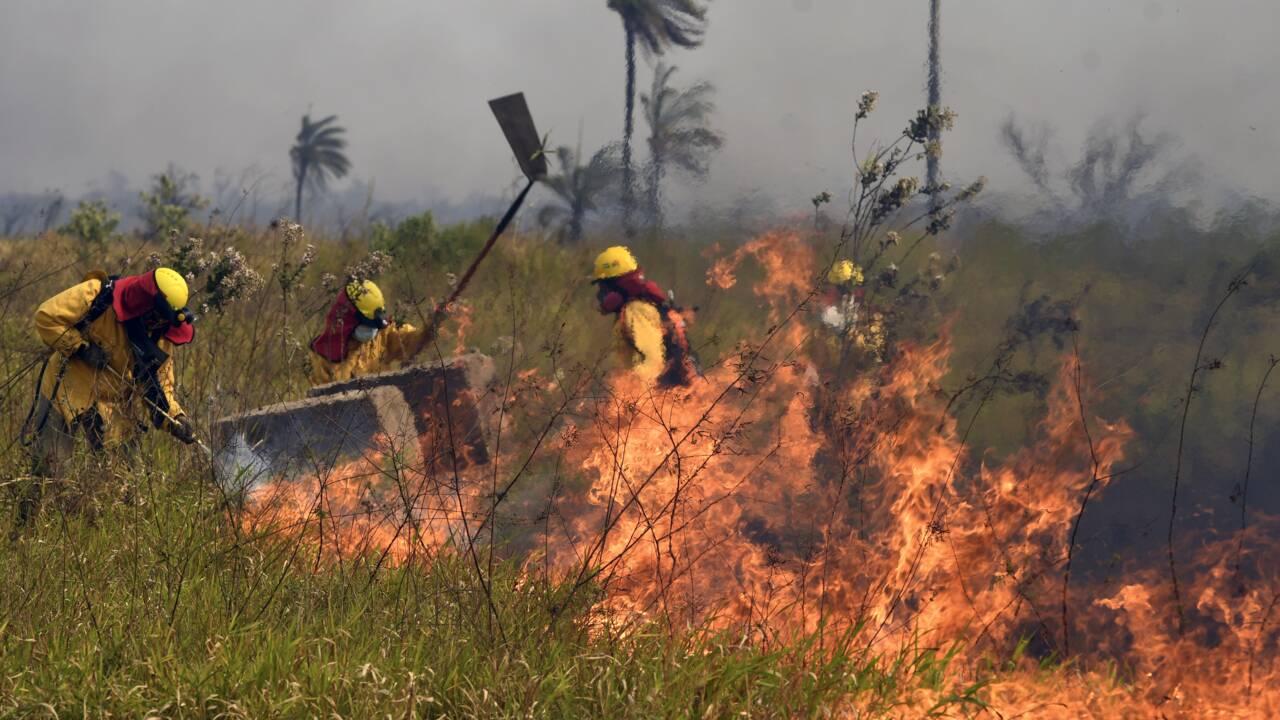 Bolivie : 749.000 hectares ravagés par les flammes cette année