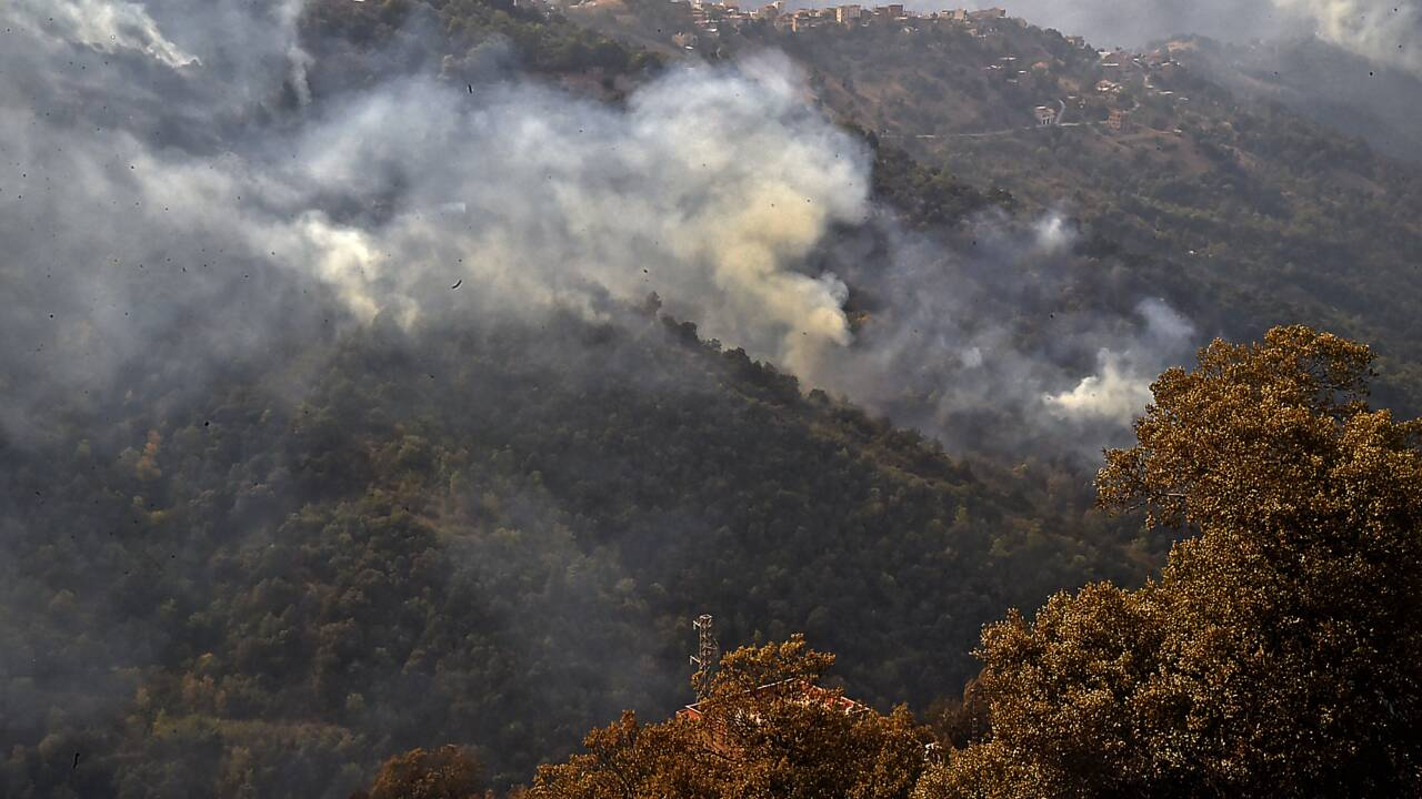 """Algérie: la plupart des incendies  """"maîtrisés"""""""