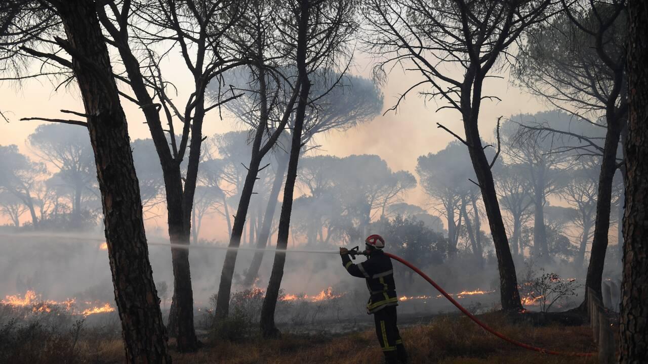 Côte d'Azur: 1.200 pompiers toujours à pied d'oeuvre pour éteindre l'incendie